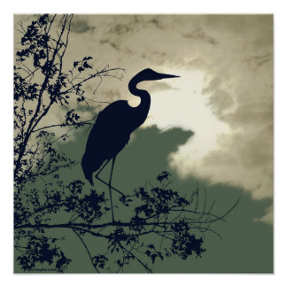 Blue Heron nursery sunset birds watching Poster
