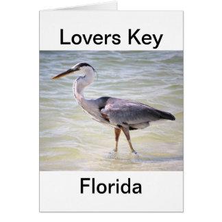 Blue Heron on Lovers Key Greeting Cards