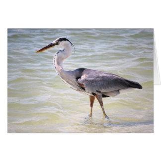 Blue Heron on Lovers Key Greeting Card