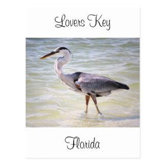 Blue Heron on Lovers Key Postcard