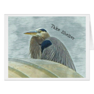 blue heron sheltering from wind behind boat on lak card