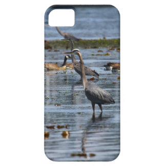 blue herons case for the iPhone 5