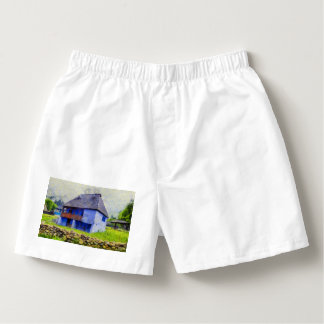 Blue house painting boxers