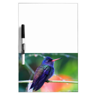 Blue Hummingbird Dry Erase Board