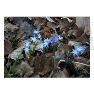 Blue Hyacinth Flowers and Leaves Greeting Card