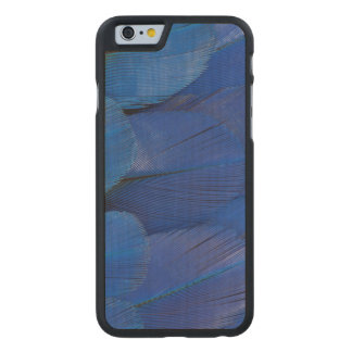 Blue Hyacinth Macaw Feather Design Carved Maple iPhone 6 Case