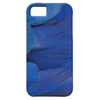 Blue Hyacinth Macaw Feather Design iPhone 5 Cover