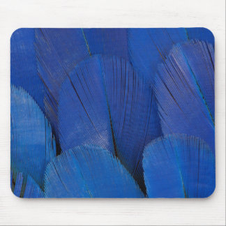 Blue Hyacinth Macaw Feather Design Mouse Pad