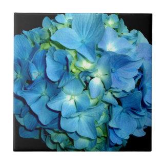 Blue Hydrangea Ceramic Tiles
