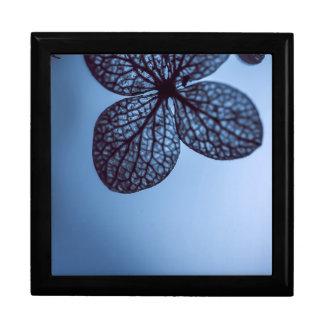 Blue Hydrangea Gift Box