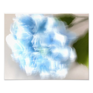 Blue Hydrangea in Abstract Photo Print