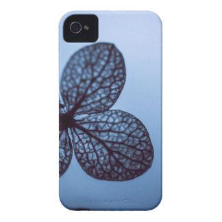 Blue Hydrangea iPhone 4 Covers