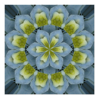 Blue Hydrangea Mandala Image 2 Art Photo
