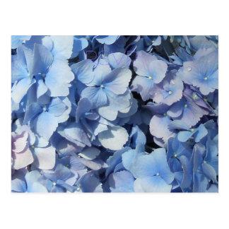 Blue Hydrangea RSVP Wedding Postcard