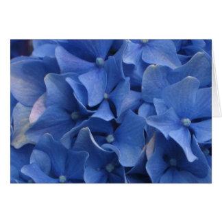 Blue Hydrangeas Card