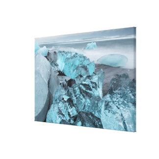 Blue ice on beach seascape, Iceland Canvas Print
