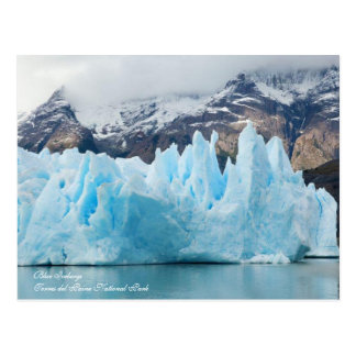 Blue Icebergs,Torres del Paine National Park Postcard