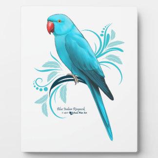 Blue Indian Ringneck Parrot Plaque