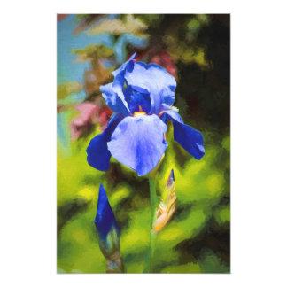 Blue Iris Photo Print