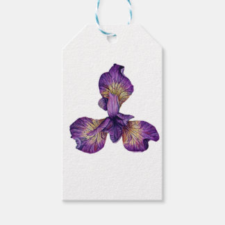Blue Iris Siberica Flower Gift Tags