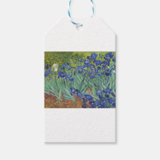Blue Irises Gift Tags