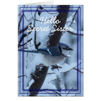 Blue Jay 7133- customize any occasion Greeting Card