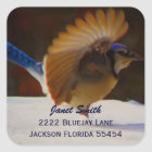 Blue Jay  Address Sticker