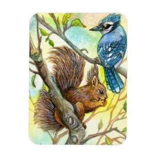 Blue Jay And Squirrel Magnet