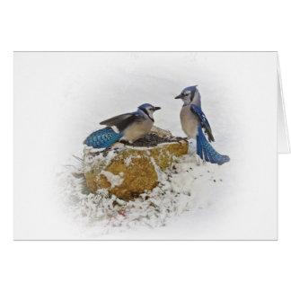 Blue Jay Battle Card