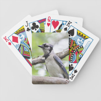 Blue Jay Bicycle Playing Cards