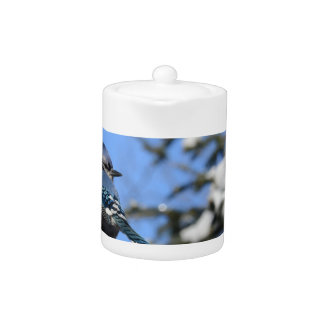 Blue Jay Bird in Winter Tea Pot
