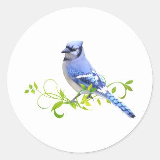 Blue Jay Bird Round Sticker
