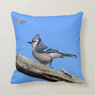 Blue jay blue sky throw pillow