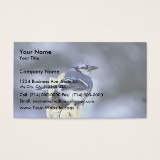 Blue jay business card