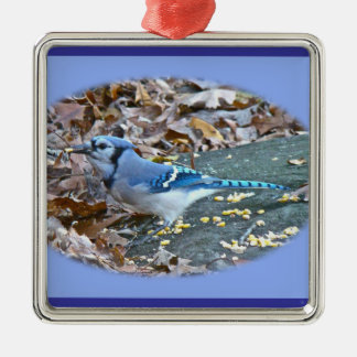 Blue Jay Christmas Ornament