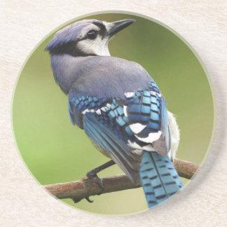 Blue jay coaster