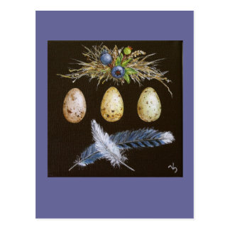 blue jay eggs with blueberries postcard