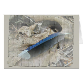 Blue Jay Feather Coordinating Items Card