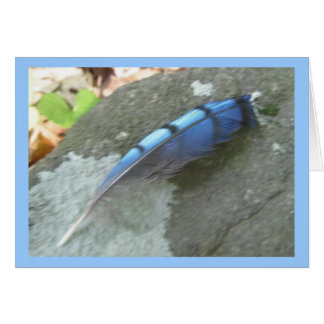 Blue Jay Feather Note Card