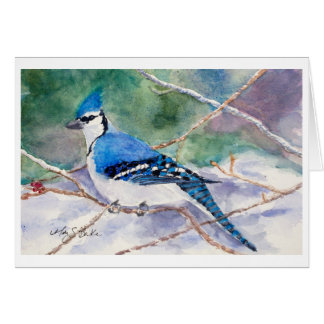 Blue Jay Holiday Card