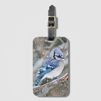 Blue Jay in a Snowstorm Bag Tag
