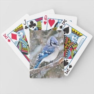 Blue Jay in a Snowstorm Bicycle Playing Cards