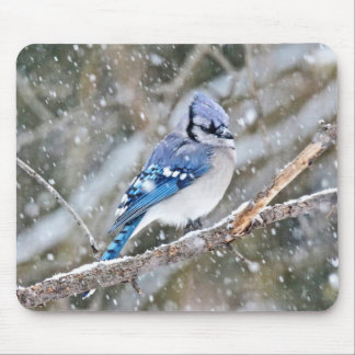 Blue Jay in a Snowstorm Mouse Pad