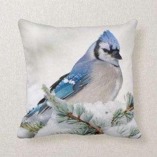 Blue Jay in Blue Atlas Cedar Throw Pillow
