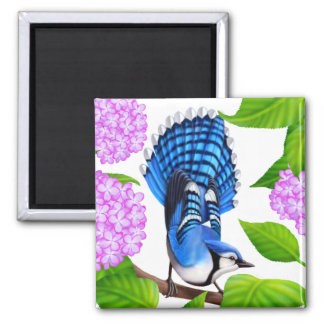 Blue Jay in Hydrangeas Bird Magnet