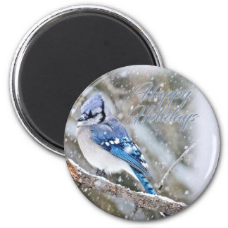 Blue Jay in Snow Christmas Holiday 2 Inch Round Magnet