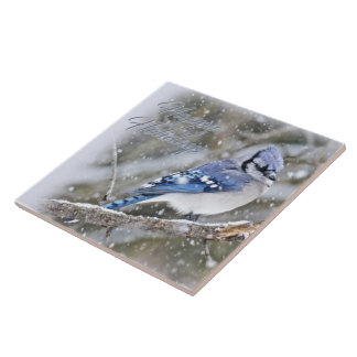 Blue Jay in Snow Christmas Holiday Tile