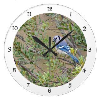 Blue Jay in Southern Wax Myrtle Wall Clock