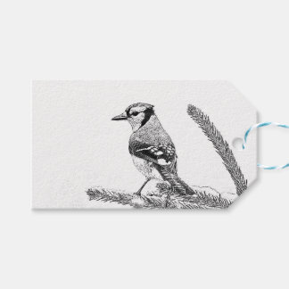 Blue Jay in Winter Sketch Pack Of Gift Tags