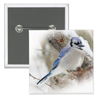 Blue Jay in Winter Snow 2 Inch Square Button